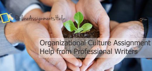 Organizational-Culture-Assignment-Help